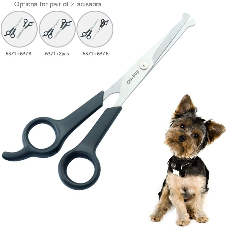 best way to groom a Goldendoodle-thedoodleguide.com