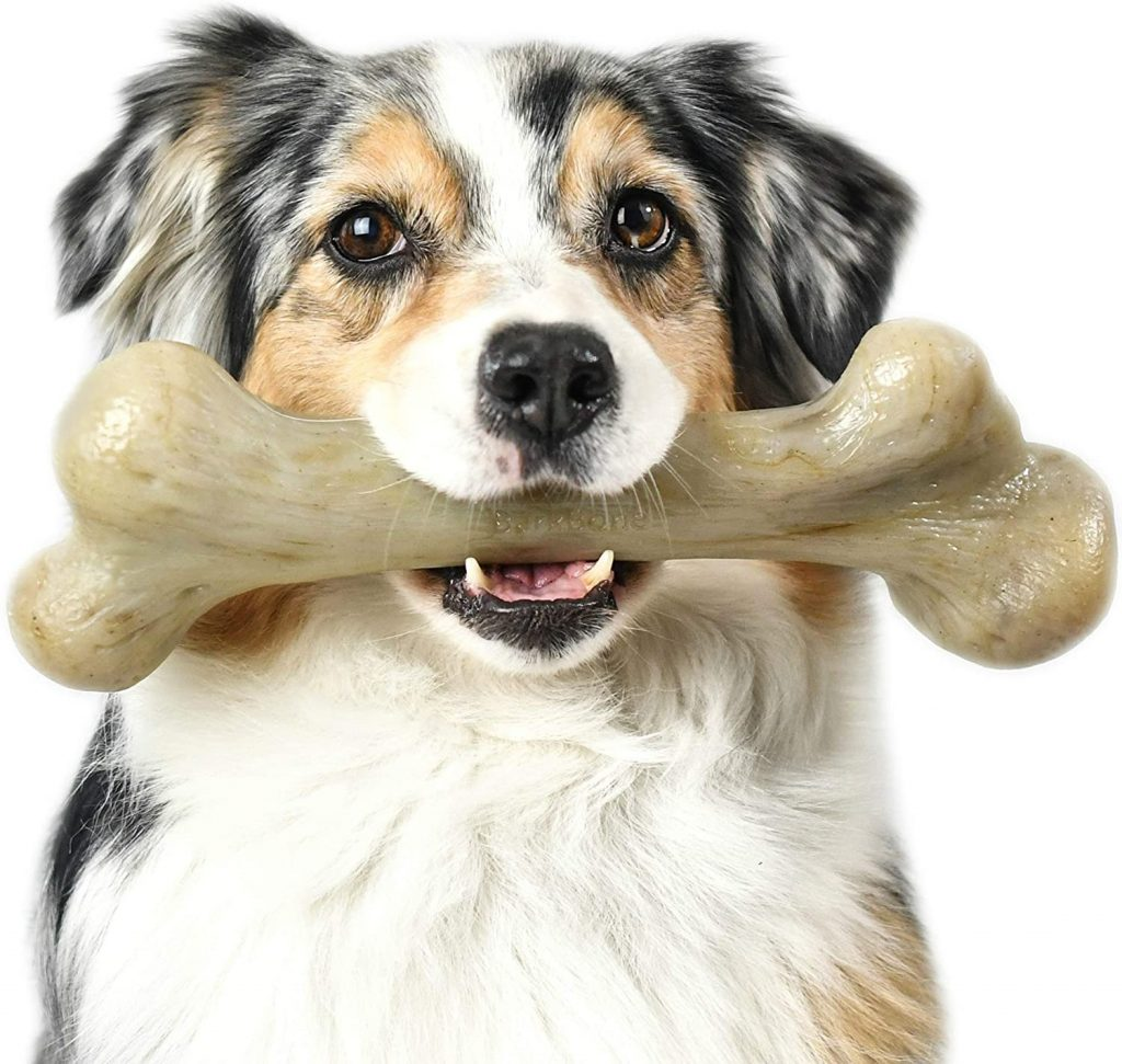 Pet Qwerks Dinosaur Barkbone -  best dog bones for goldendoodles - TheDoodleguide.com