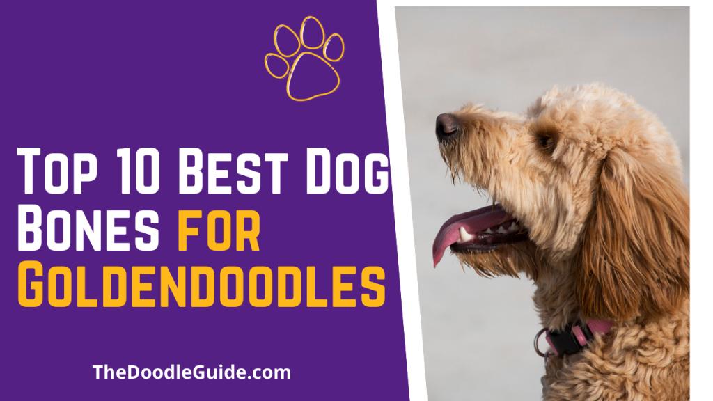 Top 10 Best Dog Bones For Goldendoodles - TheDoodleGuide.com