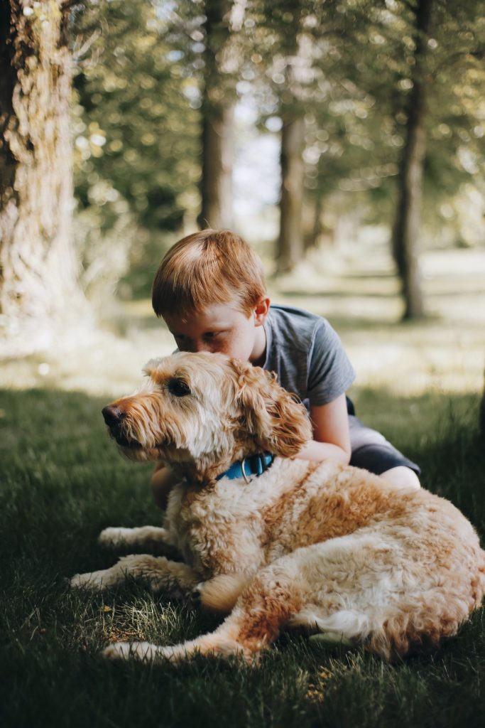 Reasons To Cuddle Your Doge - TheDoodleGuide.com