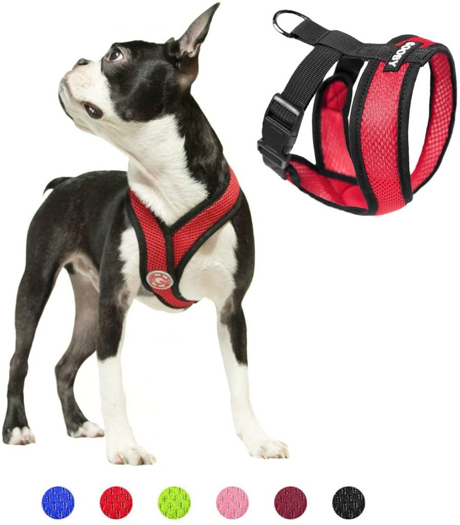 best cockapoo harnesses - TheDoodleGuide.com